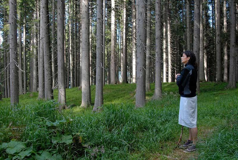 bosco-che-suona