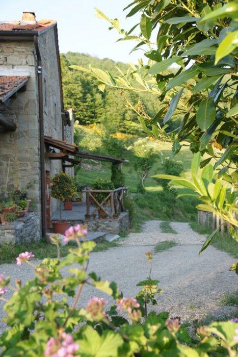 Fattorie didattiche in Val di Chiana: alla scoperta della natura